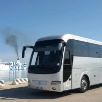 Autobus a noleggio per 55 persone